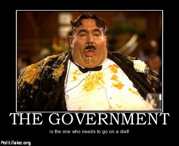 the-government-vik-battaile-politics-1355425316